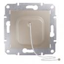 SDN1200168 Кнопка с шнур., титан