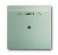 1753-0-6737 (1792-79) BJE Impuls Шампань Накладка карточного выключателя (мех 2025 U)