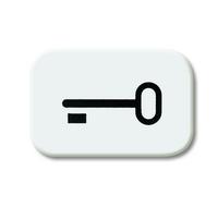 1433-0-0044 (2525 TR-214) BJE Reflex Линза с симв ключ