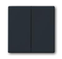 1751-0-2930 (1785-81) BJE Solo/Future Черный Антрацит Клавиша 2-ая