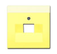 1710-0-3832 (1803-815) BJE Solo/Future Желтый Сахара Накладка 1-й ТЛФ и комп розетки наклонной (мех 213/16)