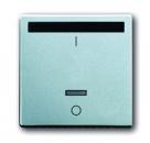 6020-0-1384 (6067-83) BJE Solo/Future Алюминий Накладка выключателя с ДУ