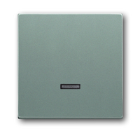 6599-0-2942 (6543-803-101) BJE Solo/Future Серый Металлик Накладка светорегулятора нажимного