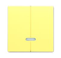 6599-0-2939 (6545-815) BJE Solo/Future Желтый Сахара Накладка двухканального нажимного светорегулятора