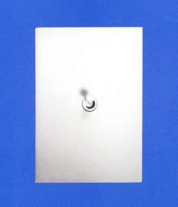 115x80 мм 1 выключатель Накладка из фарфора